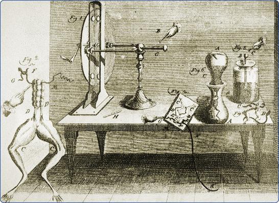 Экперимент Кулона с лягушкой