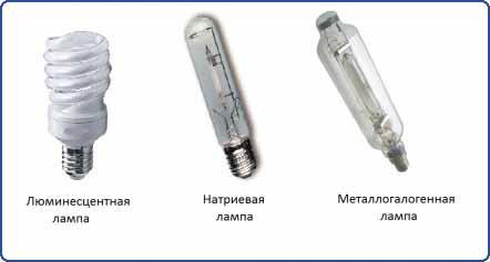 Газоразрядные лампы
