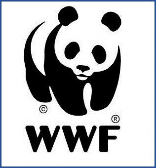 Логотип WWF