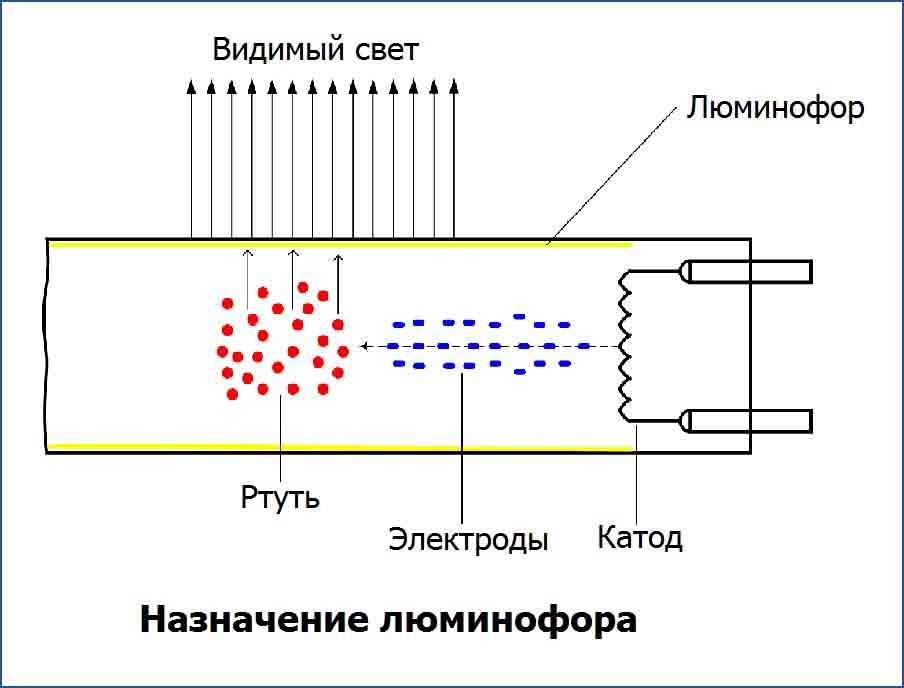 Назначение люминофора